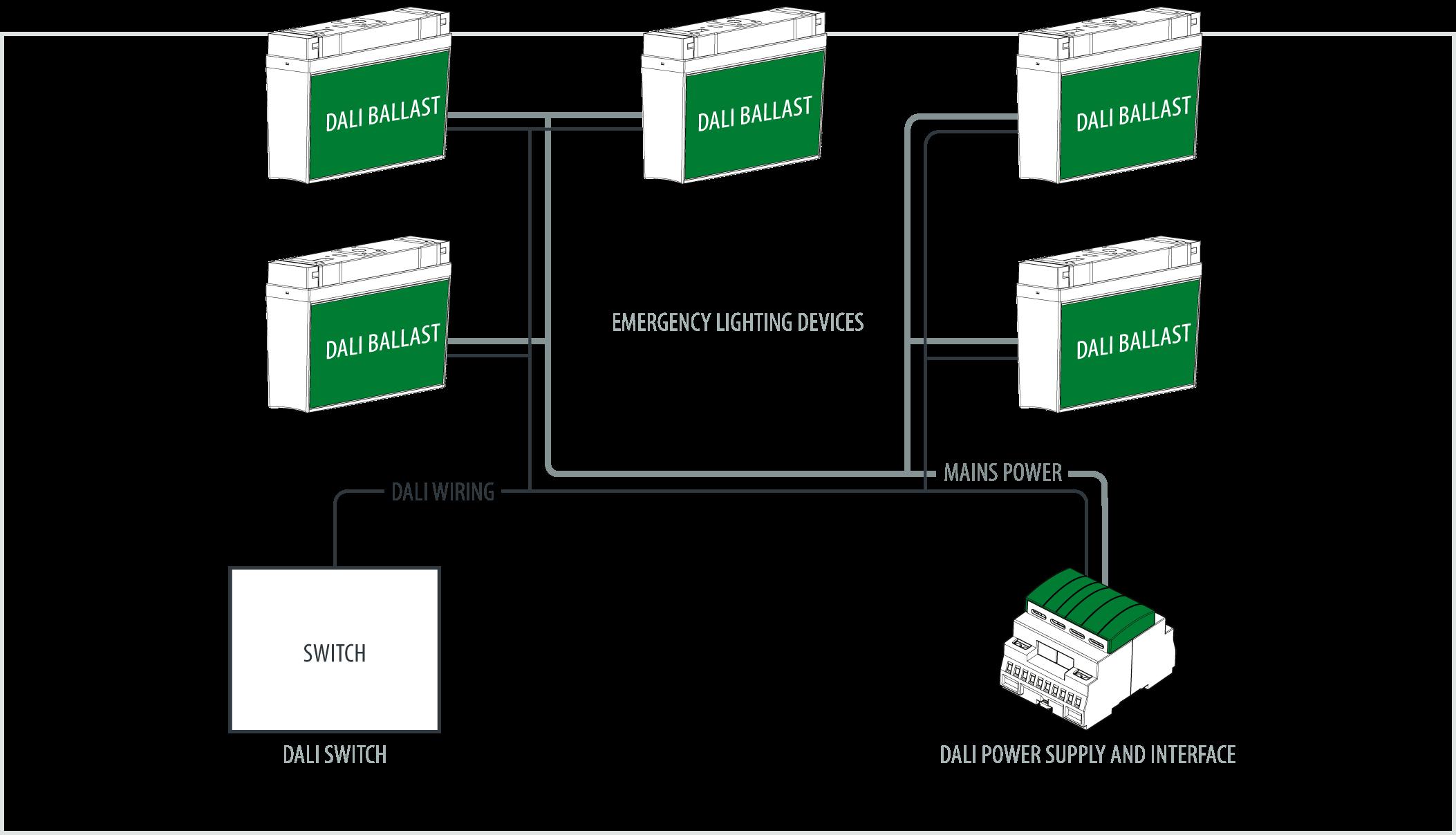 dali_simple_network